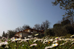 agriturismo_home_0